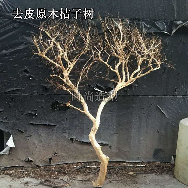 Usd 29 82 Direct Wood Shape Dry Branches Peeled Color Home