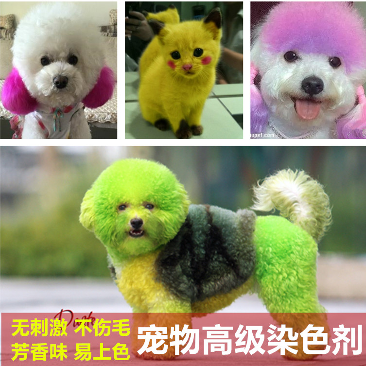 Free shipping imported pet supplies dog hair dye hair dyed available color  dark faded white coloring paste