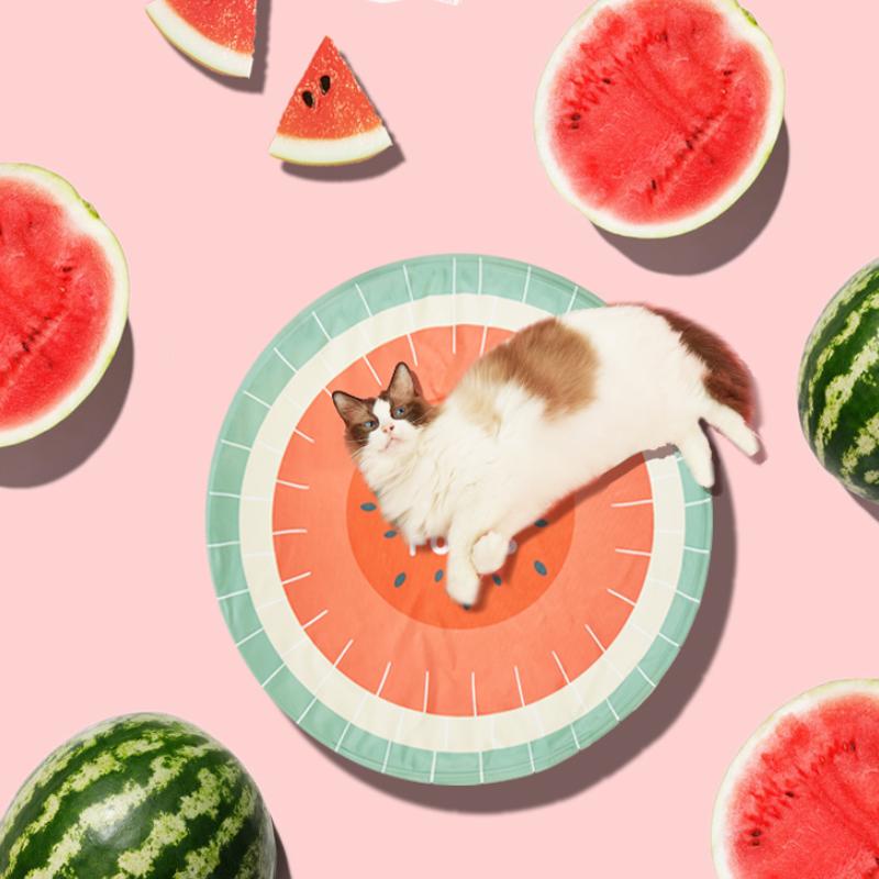 FOFOS两只福狸宠物冰垫猫咪垫板睡觉用神器脚垫夏天降温狗狗凉席