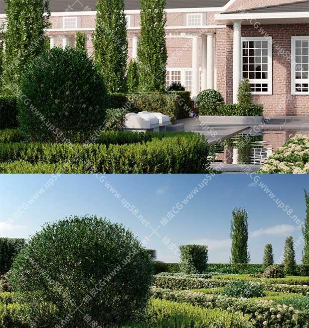3DSMAX / VRay / Corona树篱花园围栏观赏装饰景观植物3D模型