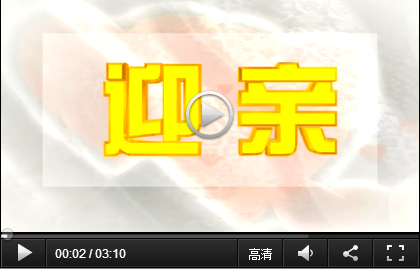 P101-116 双喜世纪婚礼DV全程编辑模板