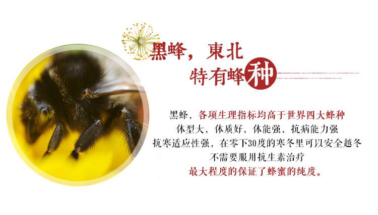 蜂蜜PC端_17.jpg