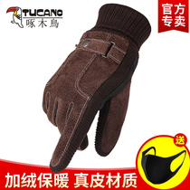 Leather gloves mens winter riding cold warm thickening plus velvet touch screen
