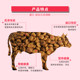 The United States sent in cat food 10kg20 pounds short blue cat Garfield anti-British short hair ball cat food beef flavor Kitten Cat Food