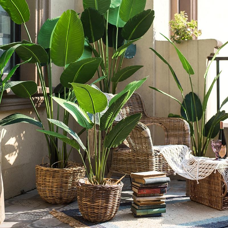 掬 Han Traveler Banana Large Simulation Tropical Plants Bonsai Ground E Decorative Fl Landscaping