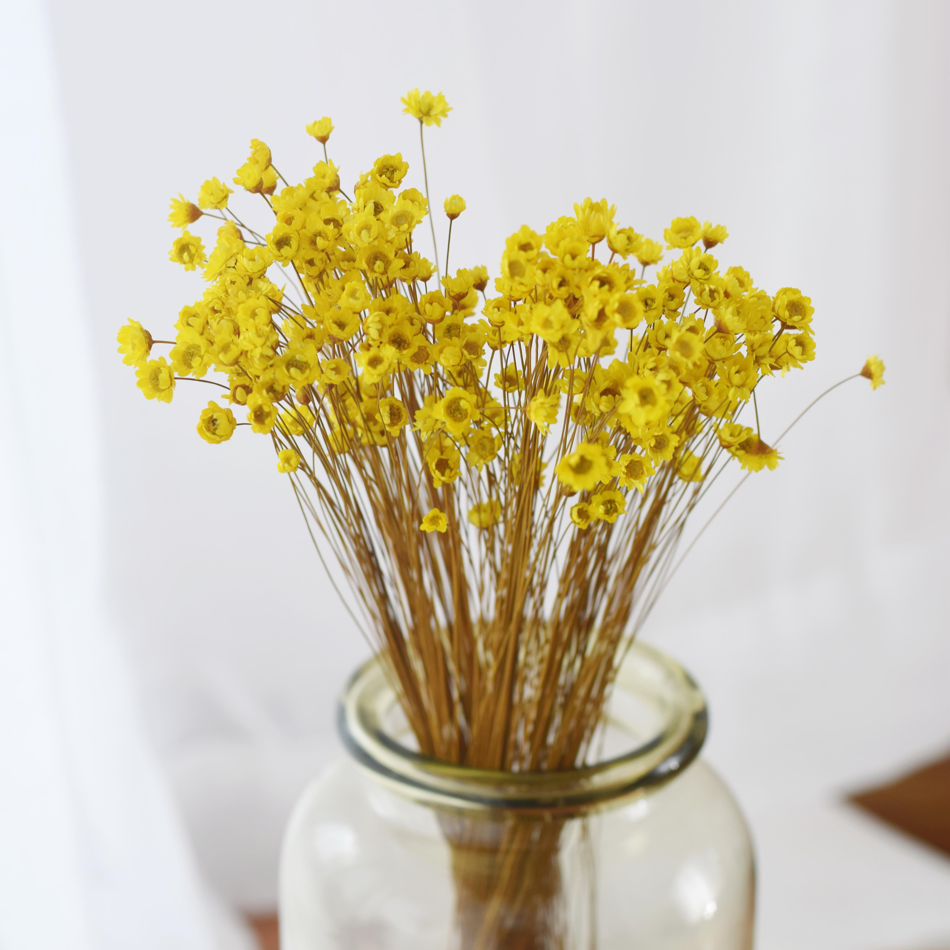 Brazilian small star flower mini daisy dried flower bouquet dried ...