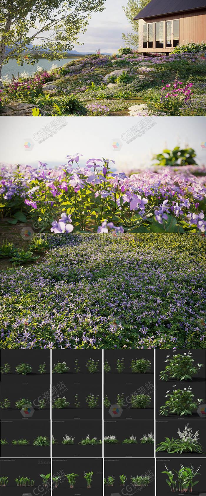 180种高质量单模草与花3D模型合集
