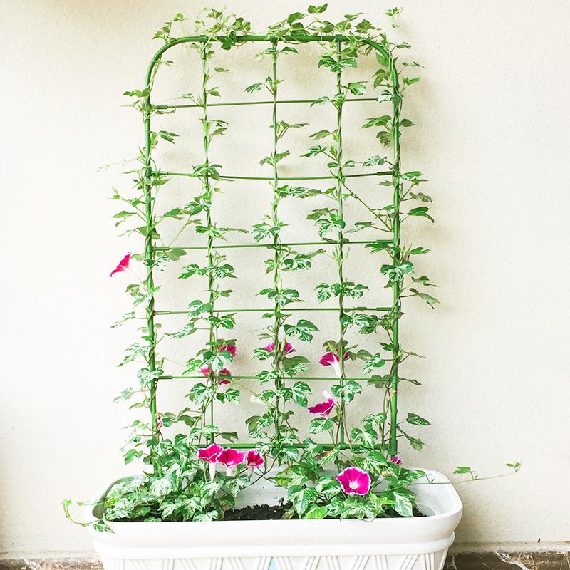 庭院盆栽植物爬藤花架喇叭花攀爬网格架子园艺花支架可造型花屏