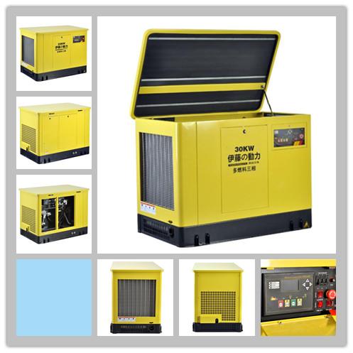 15KW немой бензин генератор  220V/380V газ генератор группа LNG  ирак виноградная лоза мощность YT15REG