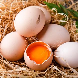 我老家正宗农家散养土鸡蛋40枚新鲜天然虫草柴鸡蛋A级谷物笨鸡蛋