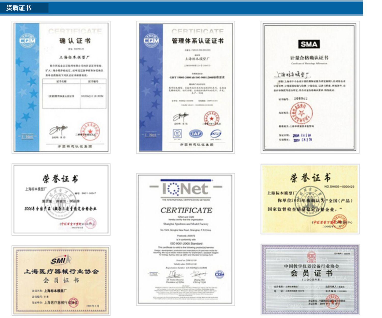 上海标本DS-1高速组织捣碎机 化妆品 生化 科研 医药 实验室用商品详情图