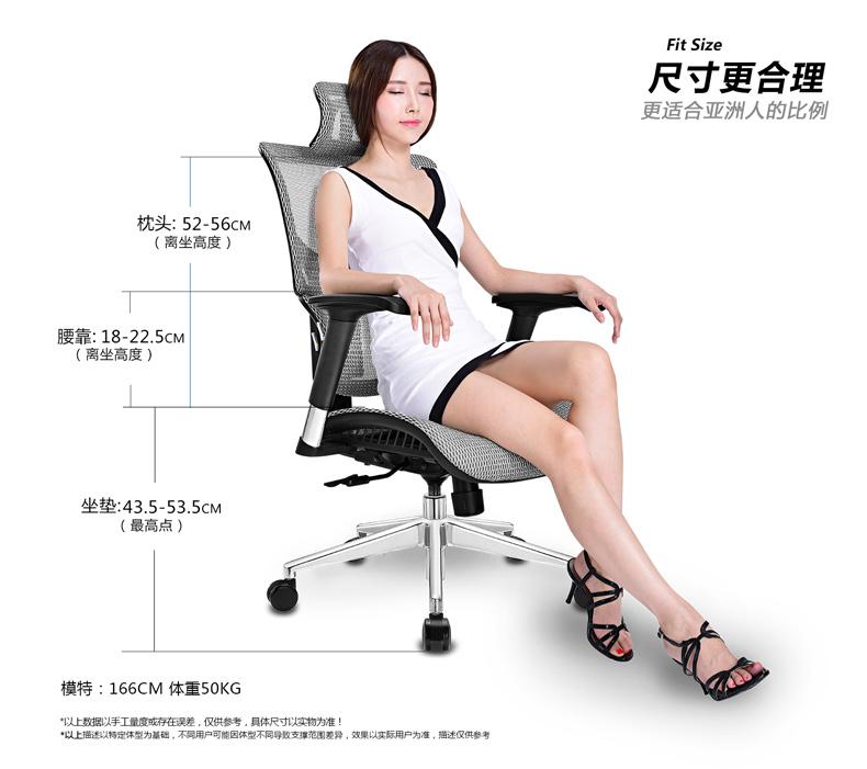 黑色版Ergomax ALX电脑椅