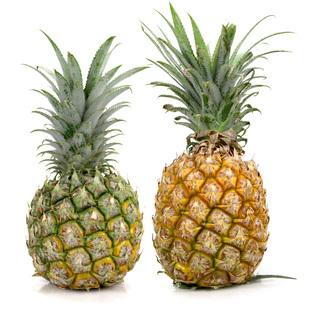 新鲜云南香水大菠萝9斤送工具刀