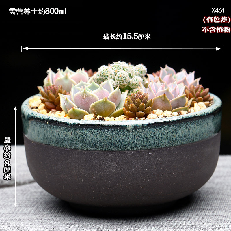 Extra Large Fleshy Plant Pots Rough Pottery Special Simple Personality Creative Compact Ceramic