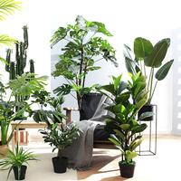 Nordic большой зеленый крытый копия Истинное растение райская птица черепаха задний лист путешественник банановое дерево