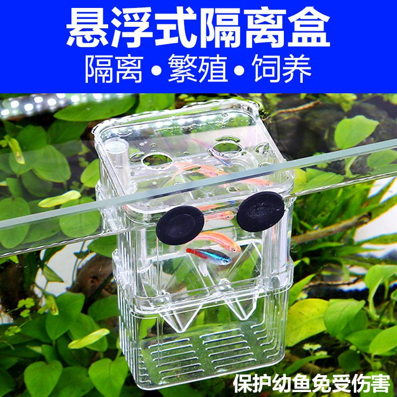 森森孔雀鱼孵化盒幼鱼鱼苗v孔雀鱼缸斗鱼产卵器热带鱼亚克力繁殖盒