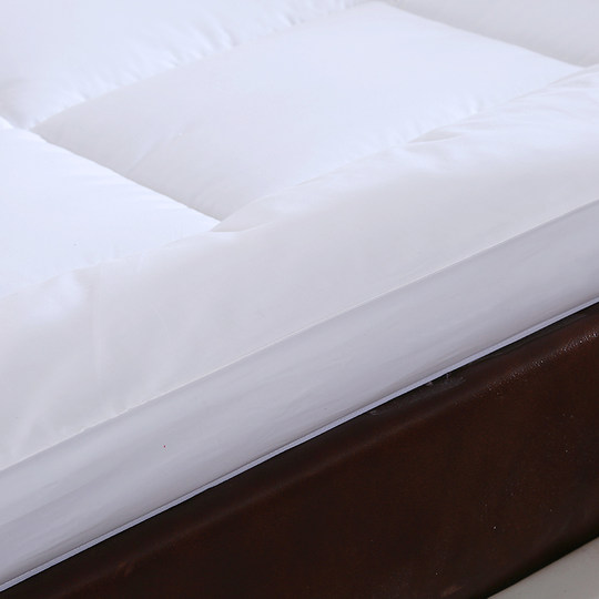 Ya Wei's thick double-layer feather velvet mattress five-star hotel Simmons student dormitory bed bedding soft winter