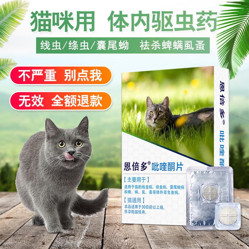 恩倍多猫咪驱虫药体内打虫宠物驱虫体内外猫咪成幼猫通用内用药品_天猫超市优惠券