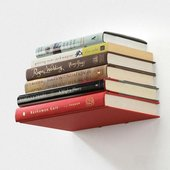 Stainless Steel Invisible Bookshelf
