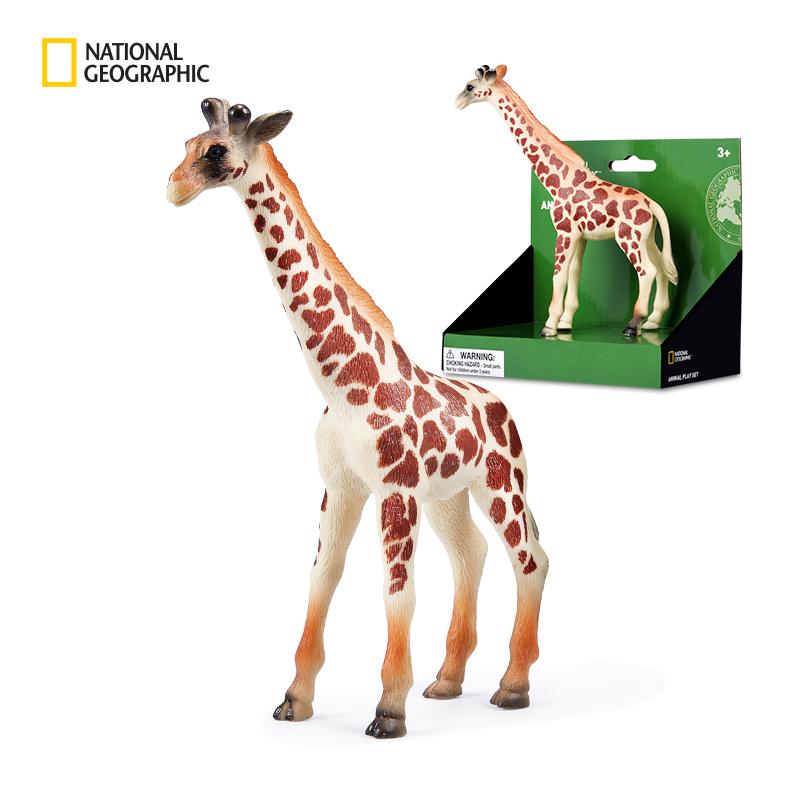 【国家地理正版】野生仿真动物玩具套盒