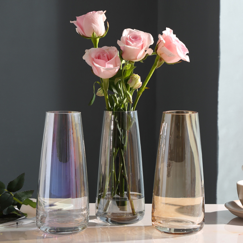 Light luxury glass vase decoration modern simple living room transparent water culture vase north European table decoration creative