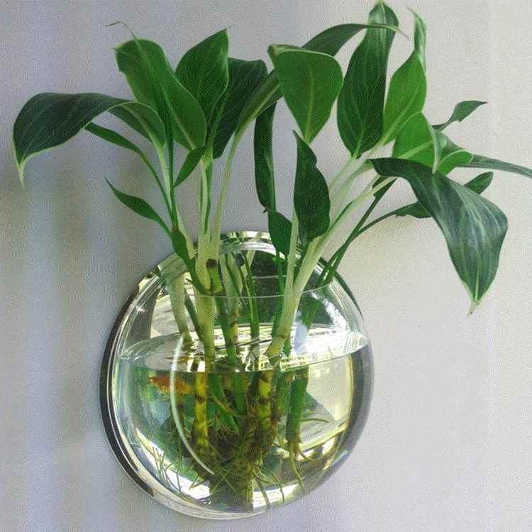 透明花瓶墙壁挂玻璃创意水培墙上半圆形家用悬挂式挂墙花盆