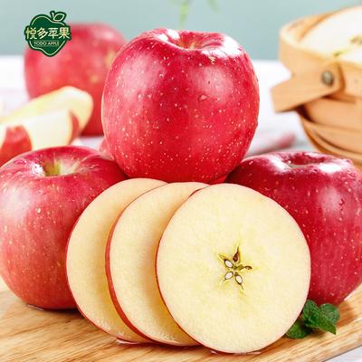 悦多山东烟台红富士苹果10/5斤脆甜水果新鲜当季整箱平果包邮批发