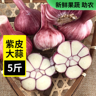 Garlic white Purple 5 kg loaded fresh garlic dried garlic garlic pesto farm full-grown seed flap shipping fresh