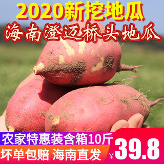 Hainan Chengmai bridge selenium-enriched selenium-rich sweet potato chestnut farm Special Pack 10 pounds