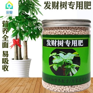 Green Tree Pachira happy tree houseplant fertilizer special fertilizer for potted general-purpose fertilizer available fertilizer