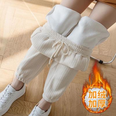 高腰裤休闲运动裤子女秋冬宽松加绒束脚哈伦裤加厚显瘦萝卜奶奶裤