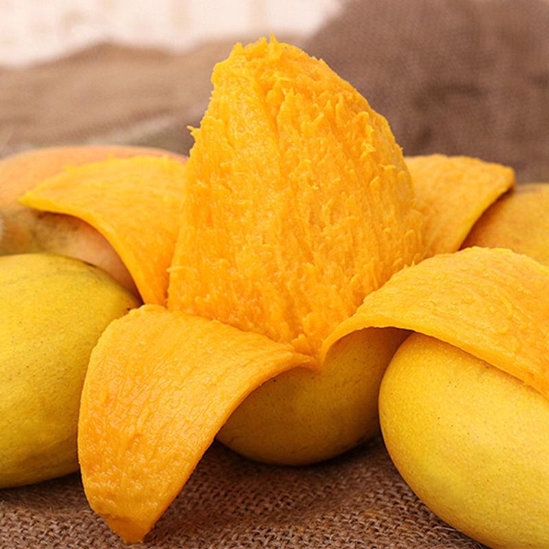 精品中大果5斤云南小台农芒果大果当季新鲜