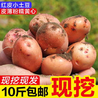 Yunnan red-skinned yellow heart mini small potatoes fresh agricultural products 10 kg FCL package of potatoes potato