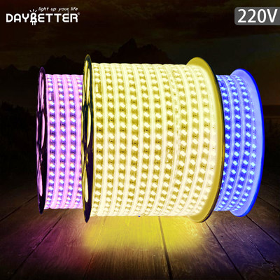 LED light strip three-color discoloration 220V home users outside waterproof bedroom living room ceiling remote control soft light bar engineering