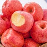 苹果热销榜一 当季烟台红富士5斤   券后¥14.8