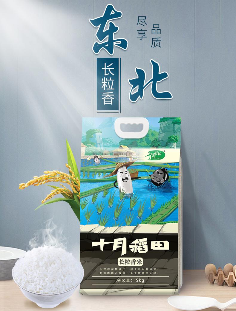 十月稻田 长粒香米 大米 10斤*2件 双重优惠折后¥68.4包邮