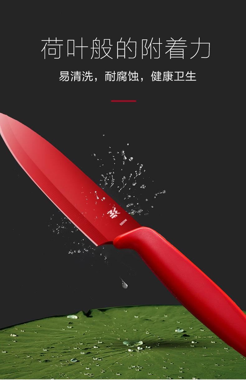 德国 福腾宝wmf Touch系列 特种不锈钢 水果刀2件套 图10