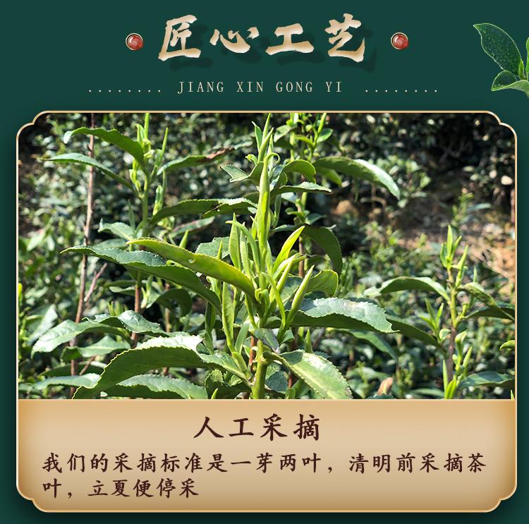 江小茗 21新茶 特级安徽黄山毛峰 250g*2罐 图6