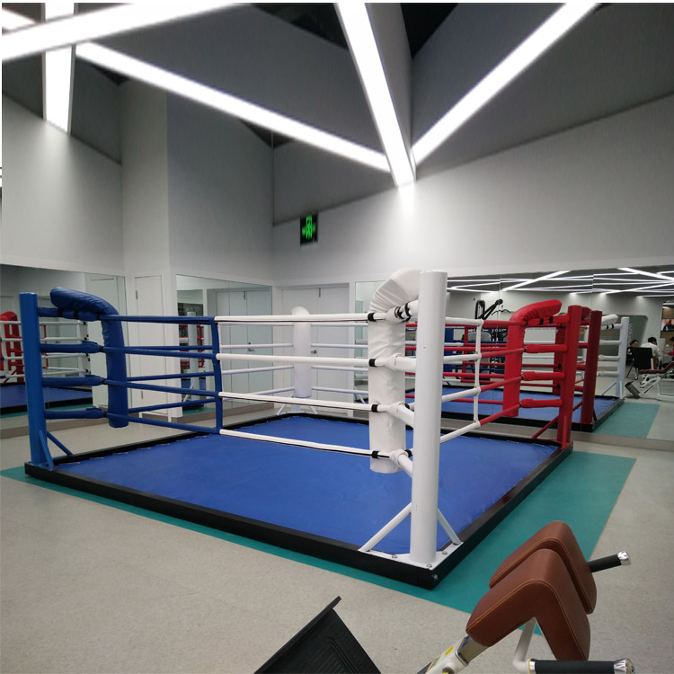 Санда кольцо боксерское кольцо боевых искусств Санда Тайвань завод прямой настольный настольный компьютер MMA битва игры