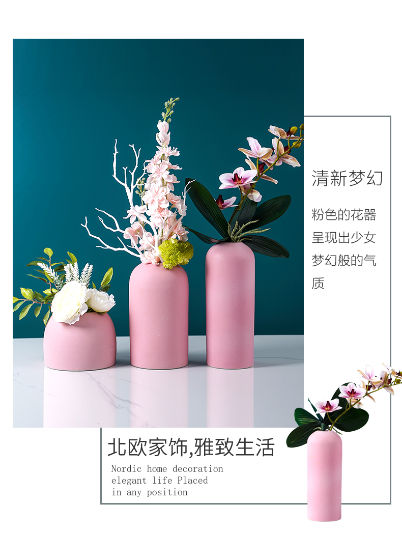 Nordic light and decoration vase dried flowers, flower arranging pink sitting room adornment table modern style of TV ark, ceramic furnishing articles