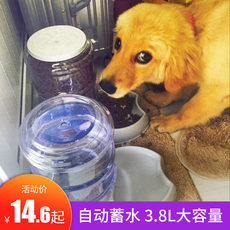 Dog drinking fountain pet automatic feeder feeding water drinking artifact cat water dispenser teddy pet supplies