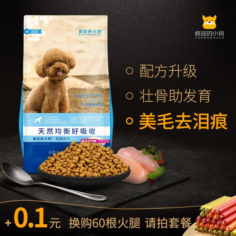Безумие небольшой собака зерна тедди соотношение медведь почетным гостем богатые миюки принимать швейцарский небольшой молодой собака становиться собака зерна универсальный 3 цзин, единица измерения веса