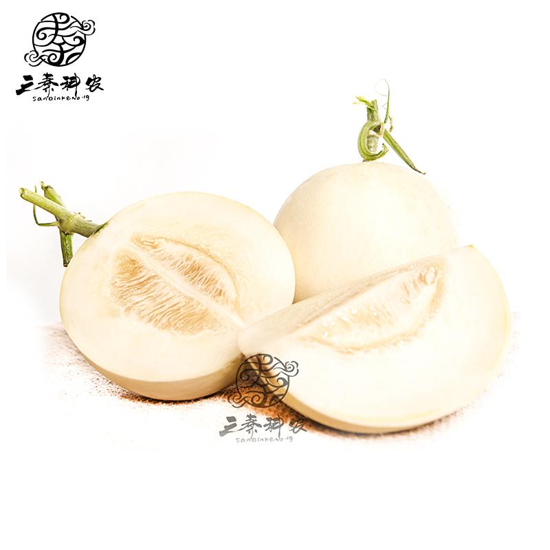 【科农甜瓜】科农阎良甜瓜5斤