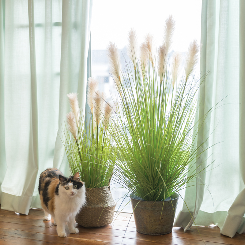 Ah Ying Ins Plants Potted Simulation Reed Grass Nordic Large Ornaments Living  Room Interior Fake Green Plant Decorative Trees
