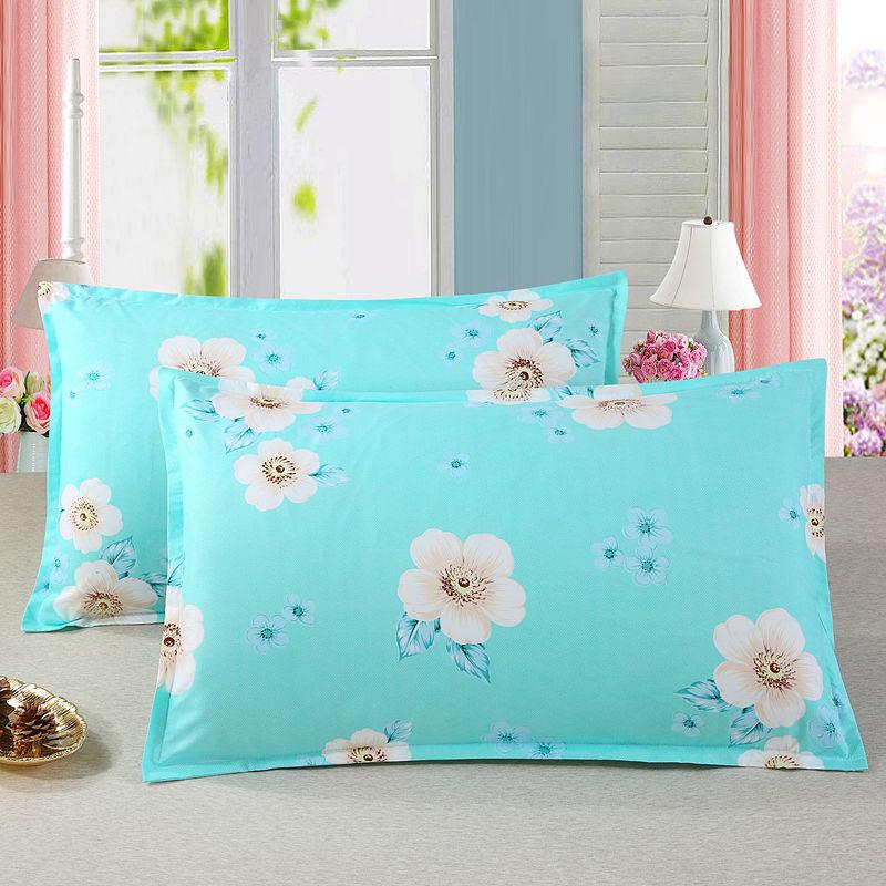 枕芯一对送枕套一对带拉链可拆洗枕头芯