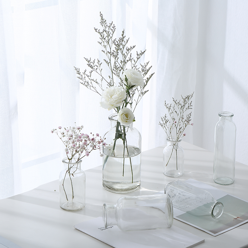 Transparent Glass Bottle Hydroponic Plant Container Green Rose
