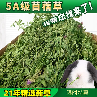 Dry alfalfa rabbit Dragon cat food 苜 草干 Dutch pig pasture grain gross weight 1kg