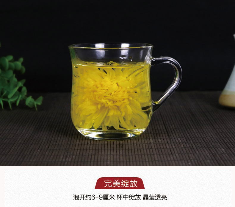 【徽春堂】金丝皇菊超大约50朵