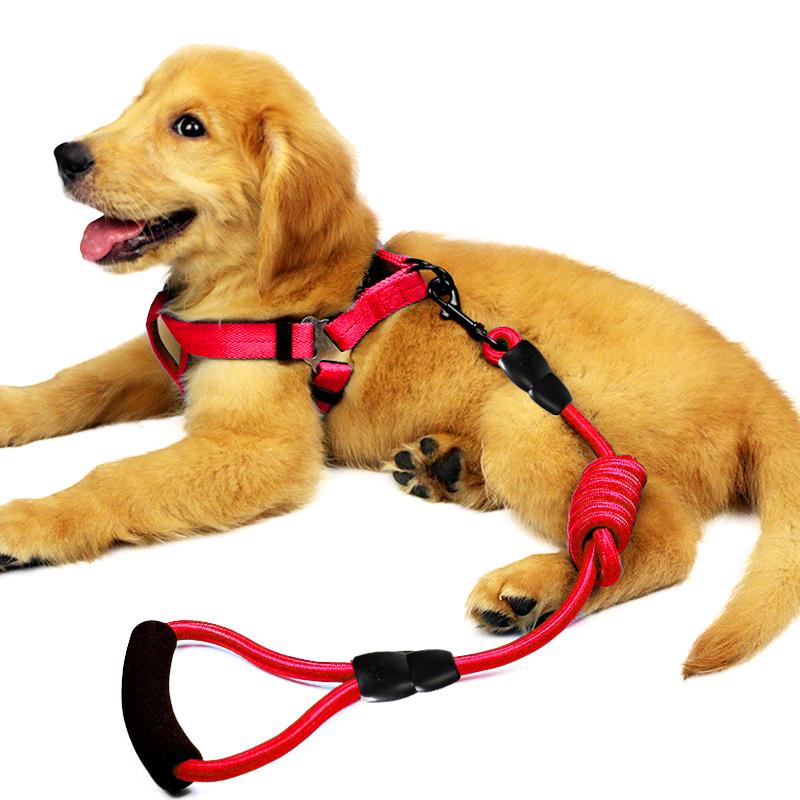 狗狗牵引绳小狗链子项圈宠物用品