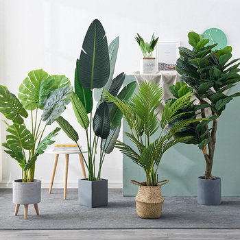 Крупномасштабный нордический моделирование завод этаж бригада человек банан карликовое дерево комнатный гостиная декоративный ложный комнатные зеленый завод украшение дерево, цена 395 руб